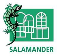 Окна Salamander компания Ридня